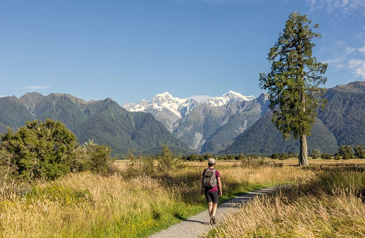 From North to South: Where & When to Travel New Zealand