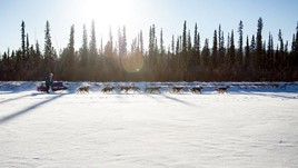 6 Ways to Explore Yukon Territory: Canada's Wild North