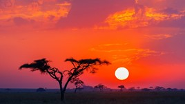 The World Nomads Podcast: Tanzania
