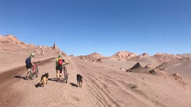 How a Panty Liner Saved Me in the Atacama Desert