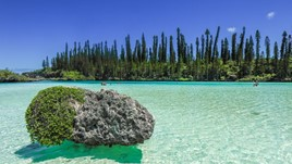 New Caledonia Travel Alerts and Warnings