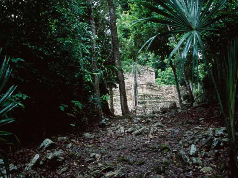 The ancient city of Muyil, deep in the jungles of the Yucatan.